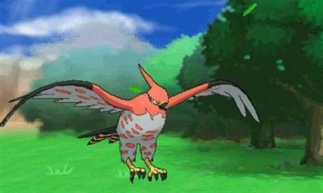 Pokemon-Talonflame
